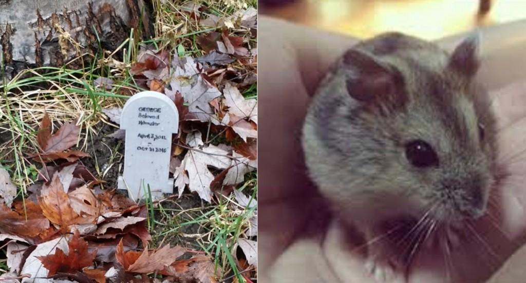 Hamster Tombstone